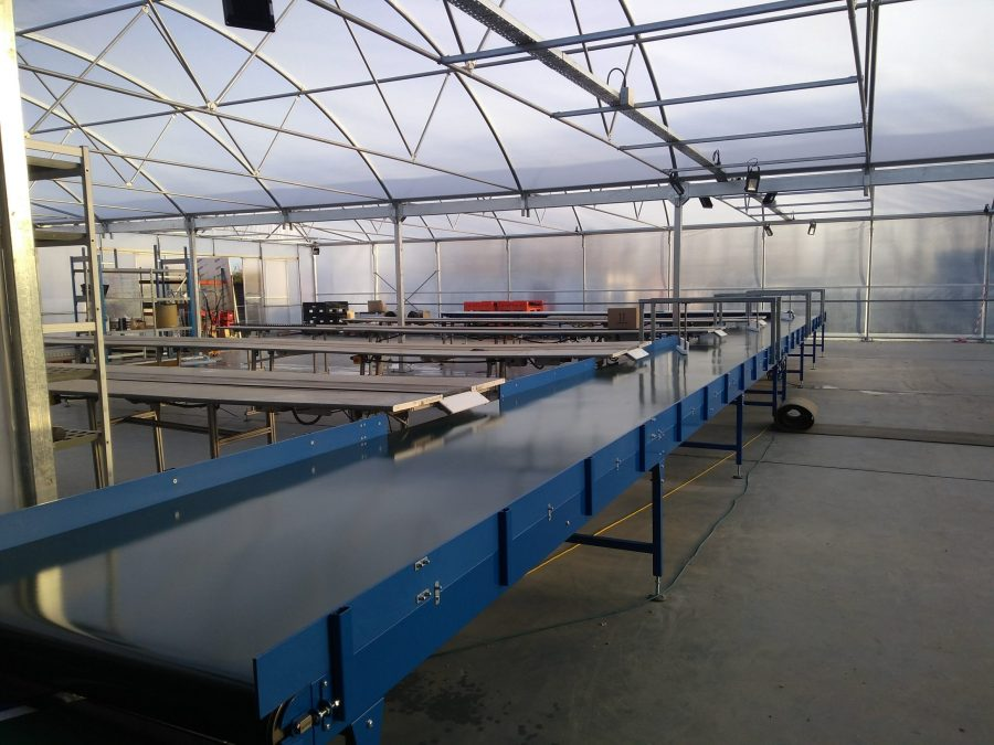 Belt conveyor for greenhouse