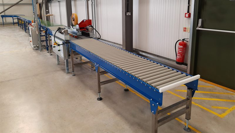 conveyor used with case sealer