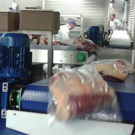 meat handling modular belt system
